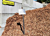 Betascapes - Wood Chip Cyprus
